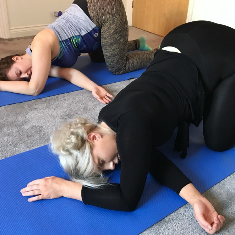 Prenatal Yoga Courses